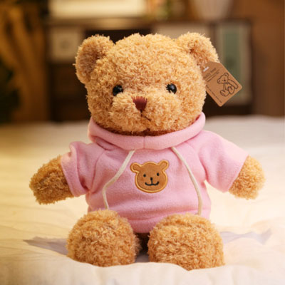 Soft Pink and Chocolate Plush Teddy Bear with Curly Hairs